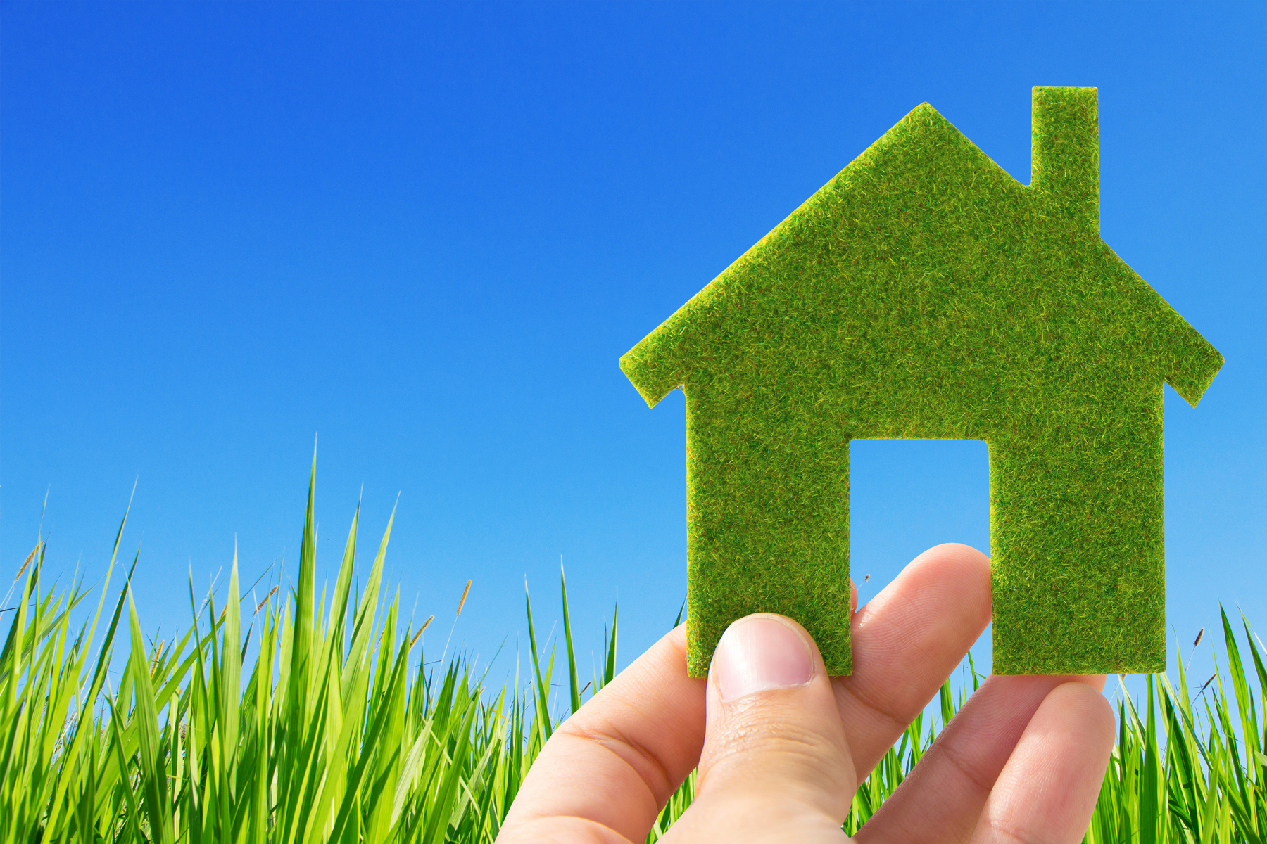 5 Easy Ways To Go Green At Home