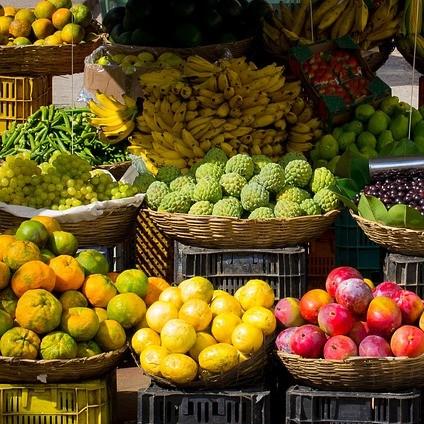 Farmers markets grow community